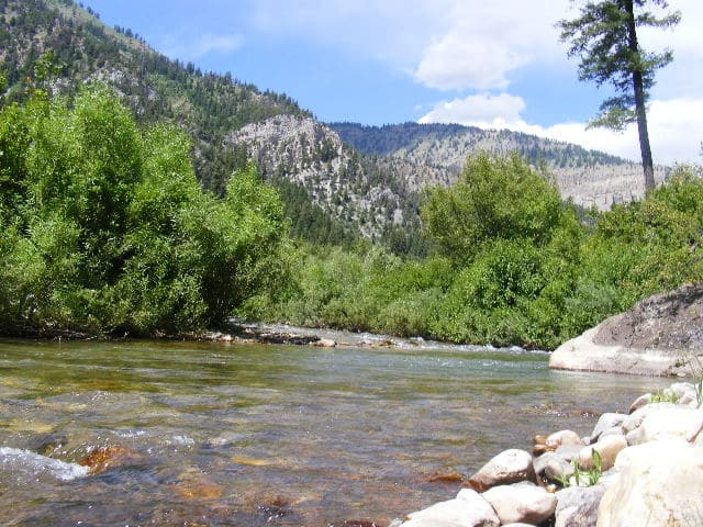 Yellowstone fly fishing rivers hatches and local fly shops for Yellowstone fly fishing