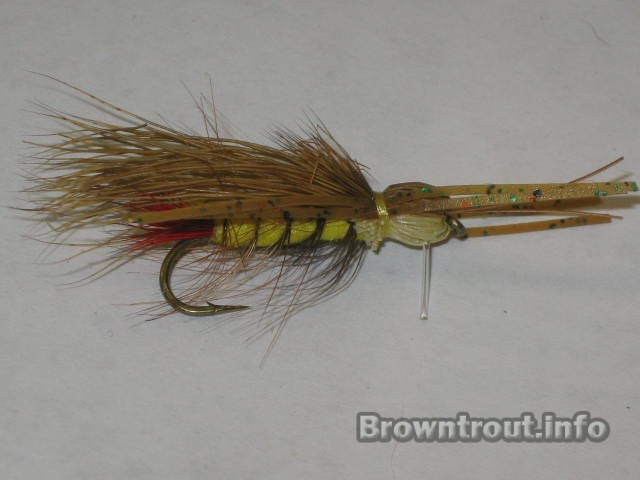 Golden stone fly pattern with rubber legs