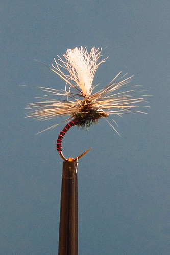 barbless hooks for brown trout