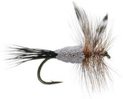 irresistable adams trout fly pattern