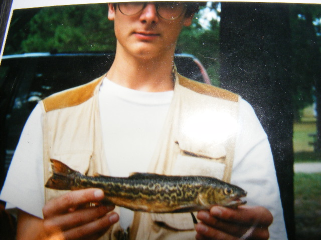 tiger trout, a brook trout, brown trout hybrid, tiger trout pictures