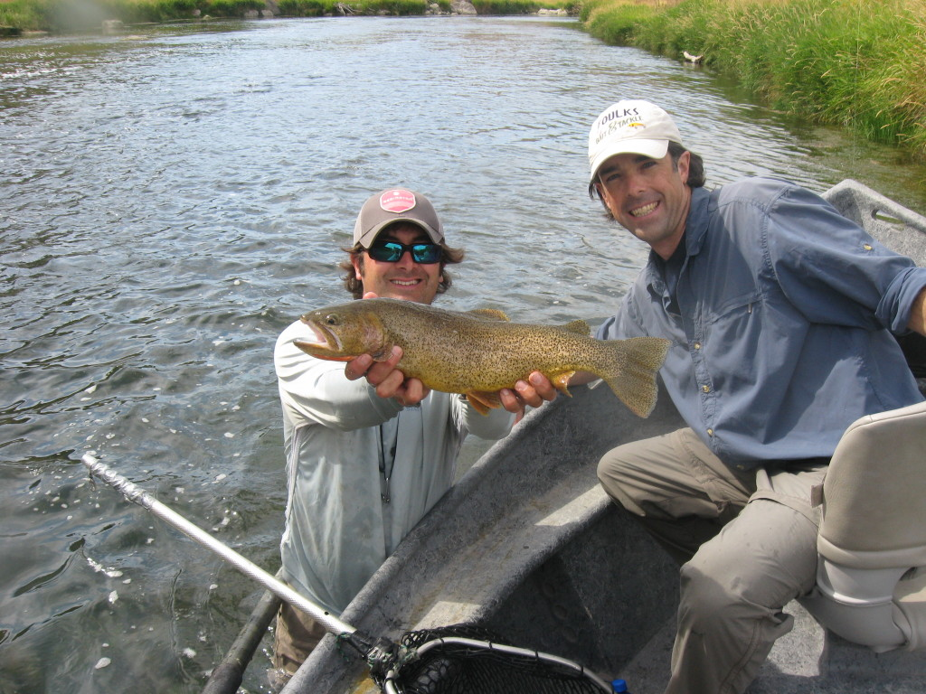 Huge cutthroat trout