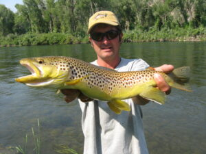 Brown trout fishing in Michigan.