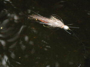 Salmon flies floating on the river.