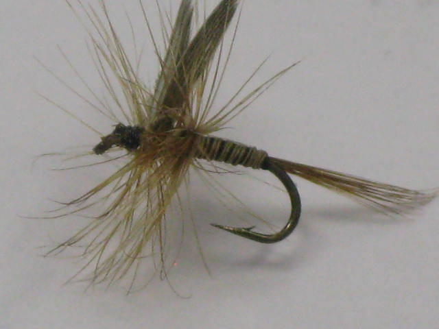 The Ginger Quill trout pattern
