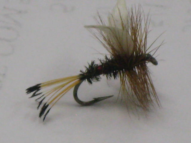 The Royal Coachman fly pattern is a Classic.
