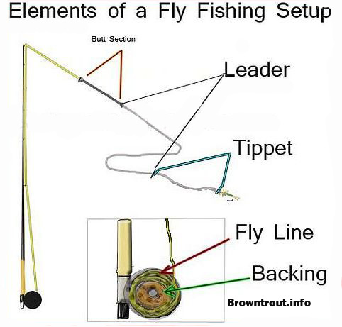 Fly fishing basics line leader backing and tippet rigging for Fishing pole setup beginners