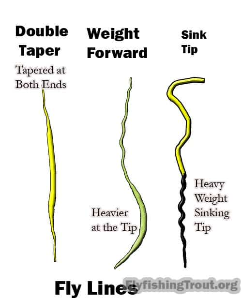 The various fly fishing line types.