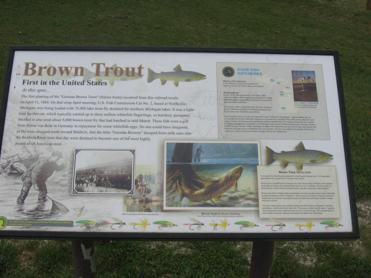 A sign in Baldwin, MI displaying the background of the Brown trout.