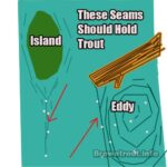 Where to Fly fish for trout: Seams and eddies.