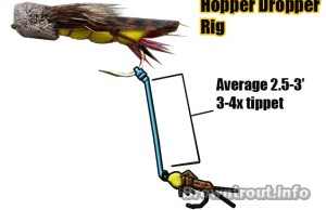 Hopper Dropper Rig For Fly Fishing