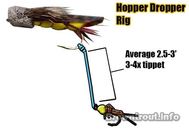 Hopper Dropper Rig For Fly Fishing, the hopper dropper rig, Hopper Dropper Rig For Fly Fishing, hopper fly fishing, hopper flies trout, how to tie a hopper dropper, hopper dropper rig, what is a dropper fly