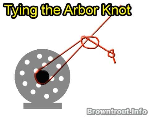 How to Tie the Arbor Knot, This connects your backing to a fly reel, tying fly line to backing knot