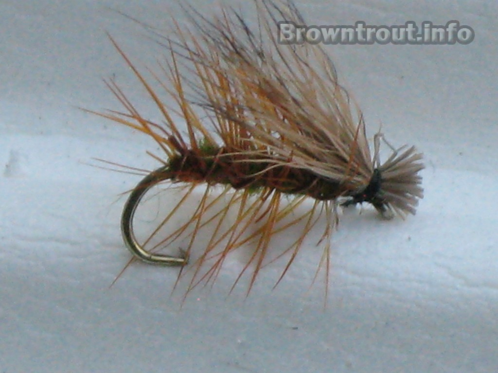 Elk Hair Caddis trout fly pattern
