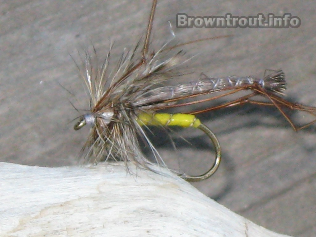 Tying the Crane Fly Pattern for Fly Fishing Trout