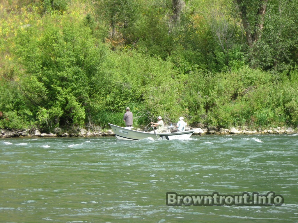 Fishing for trout during the brown drake hatch