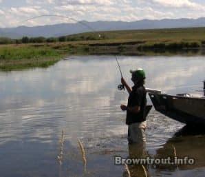 Proper hookset for flyfishing trout.