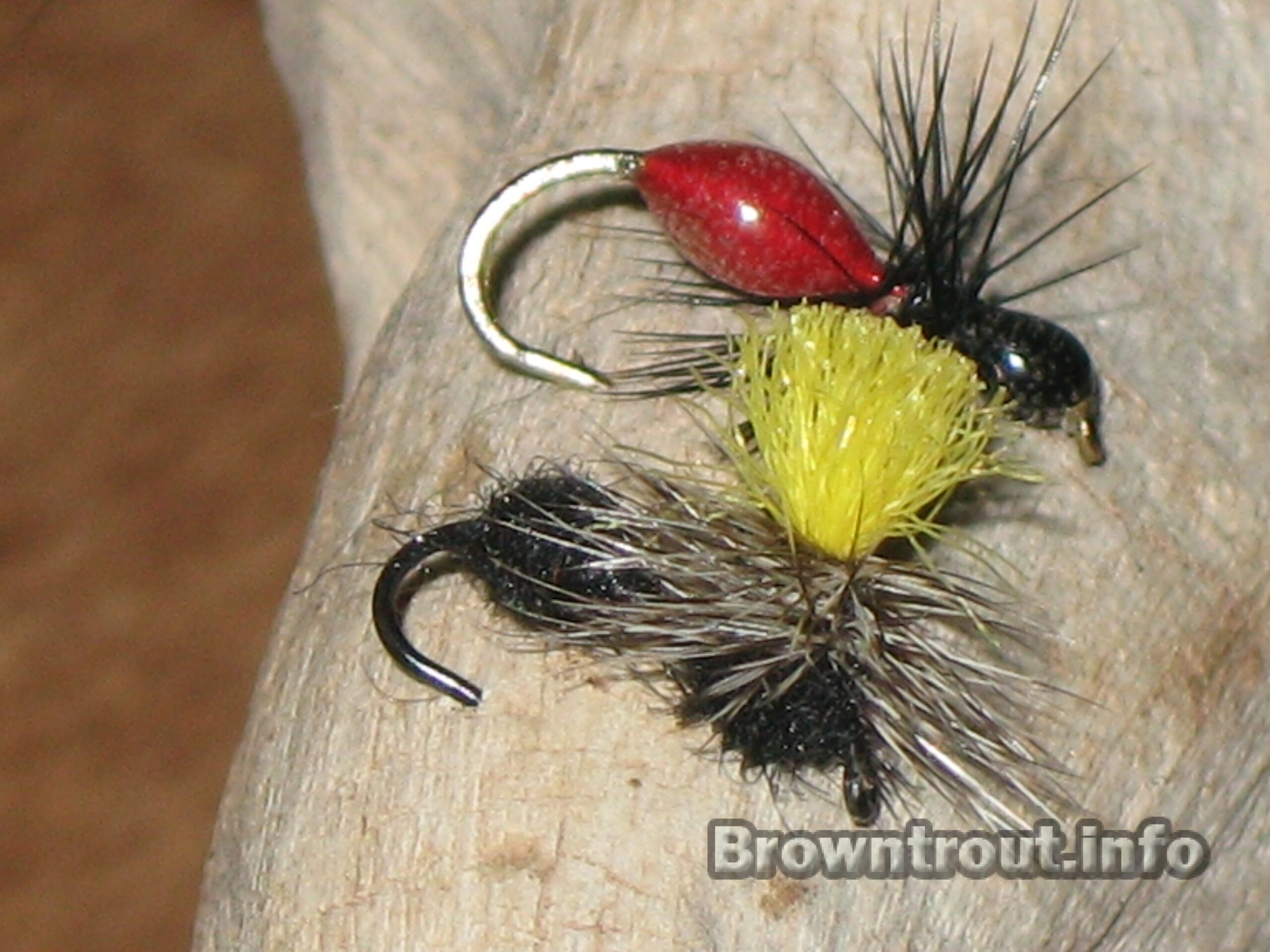 Ant Flies for trout fishing