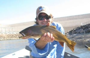 Yellowstone Cutthroat Trout, Snake River Fine Spotted