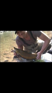 Chad Michaelz Brown Trout