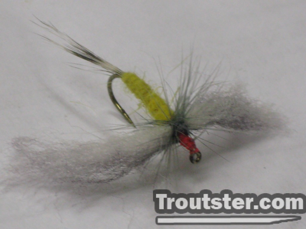 Standard dubbing with poly wings hex fly