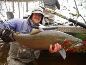 Rainbow or steelhead trout, rainbow trout, steelhead vs rainbow trout, steelhead trout vs rainbow trout, do rainbow trout have scales