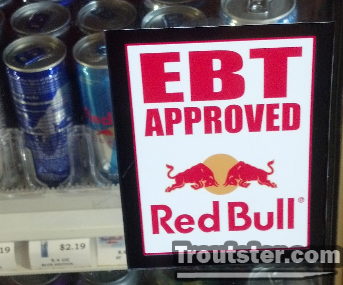 red bull and welfare