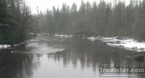 A trout stream in the dead of winter.