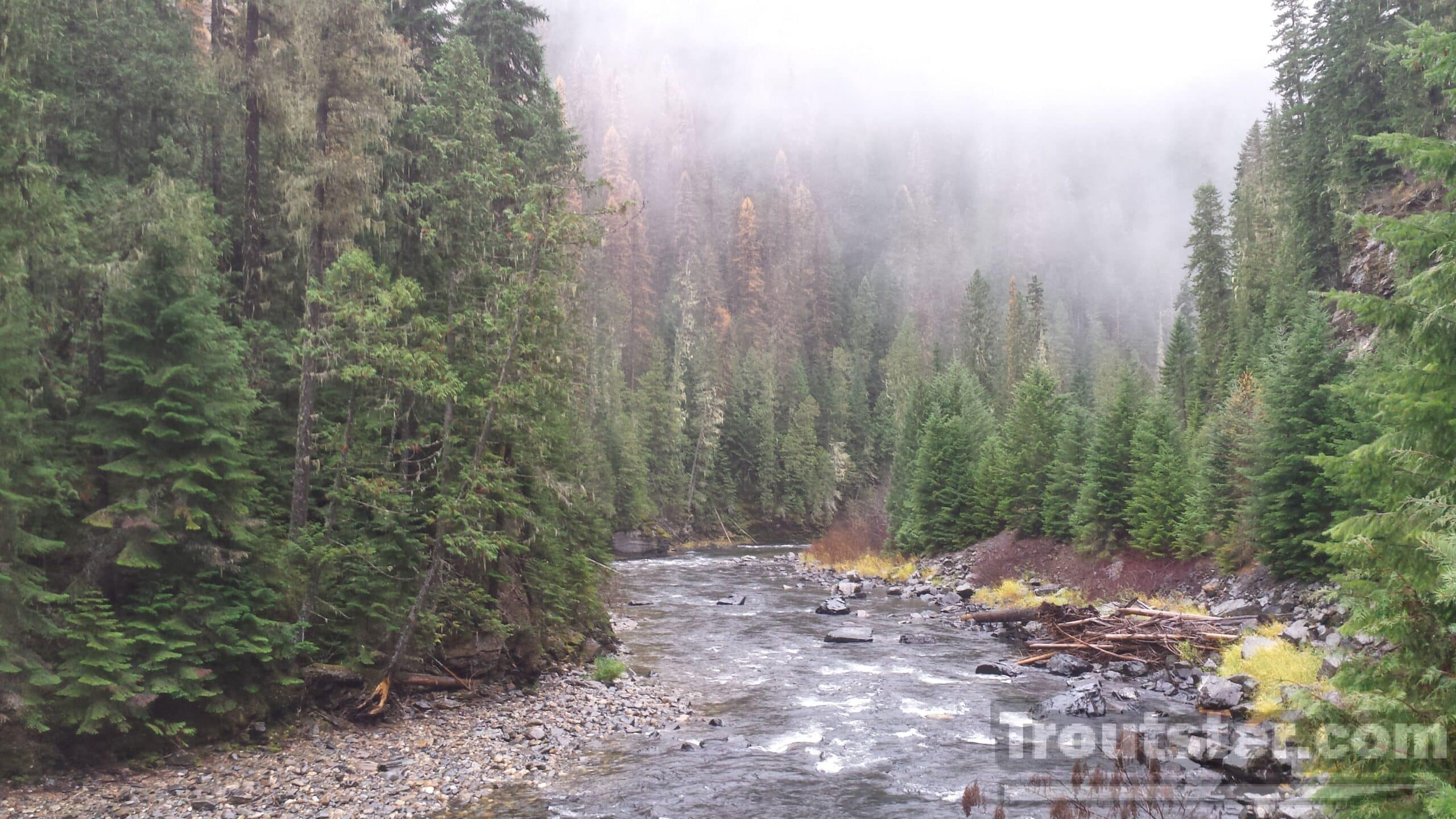 Fishing the rain for trout in Northern Idaho
