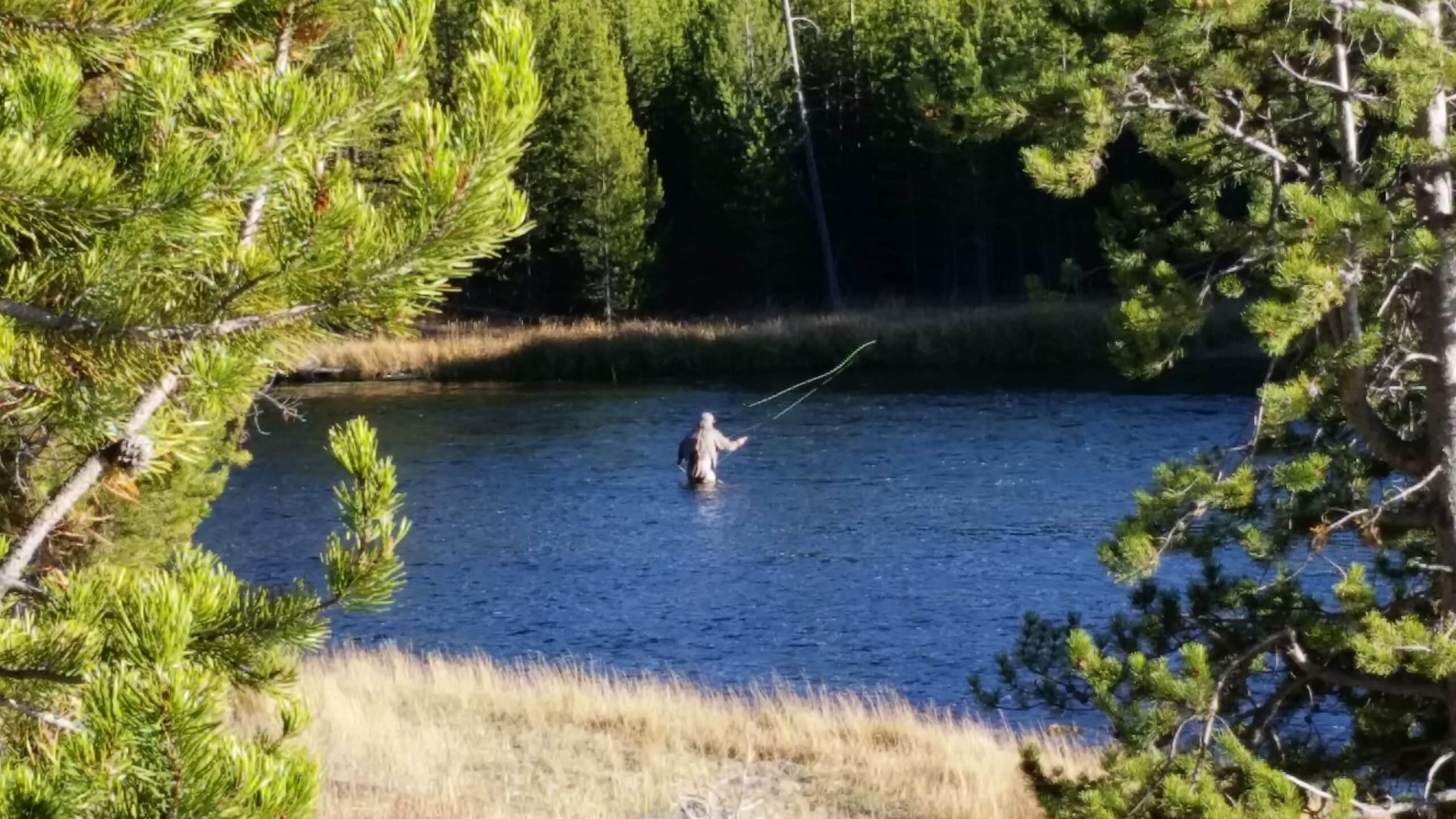 A fly fisherman on the Madison river in Yellowstone National Park Wyoming