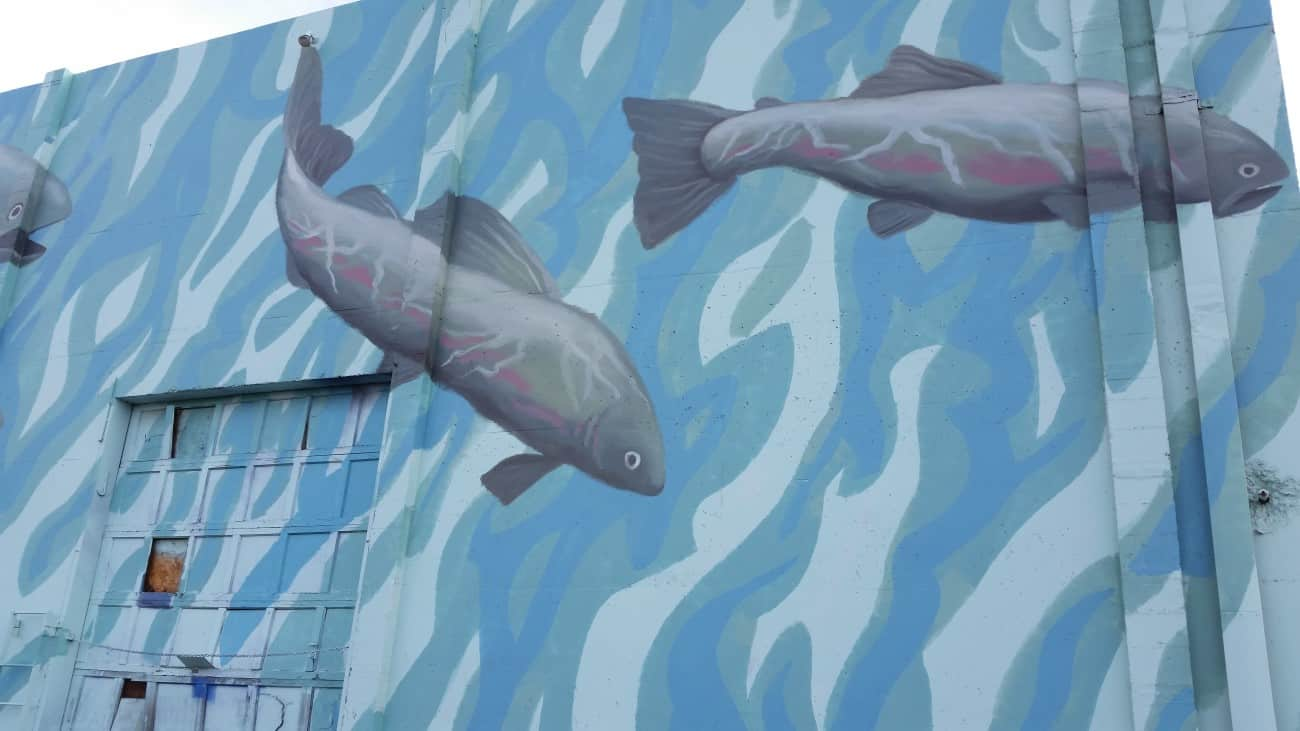 Fish Mural painted on a wall in Lewiston Idaho