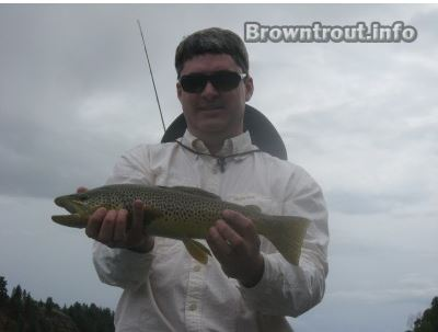 A Georgia resident Kyle Rush holding a brown trout caught fly fishing. georgia trout fishing maps, trout stream maps georgia, ga trout fishing maps