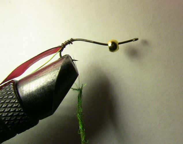 Attaching the latex back to the hook and begin dubbing your caddis larva