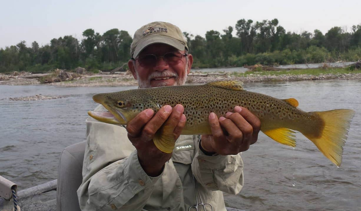 Big Idaho brown trout