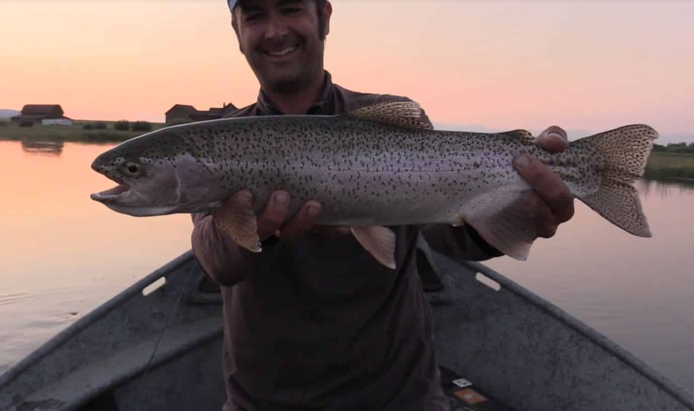 Big rainbow trout caught in Idaho