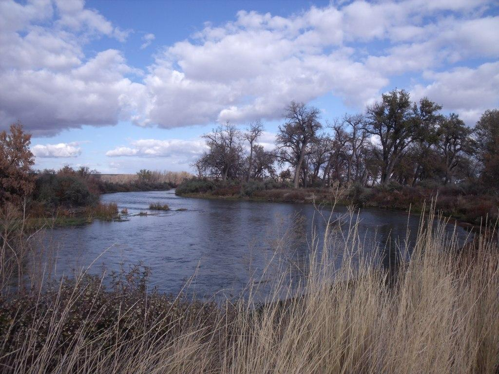 Top 5 western fly fishing rivers a few of my favorites for Bighorn river fishing