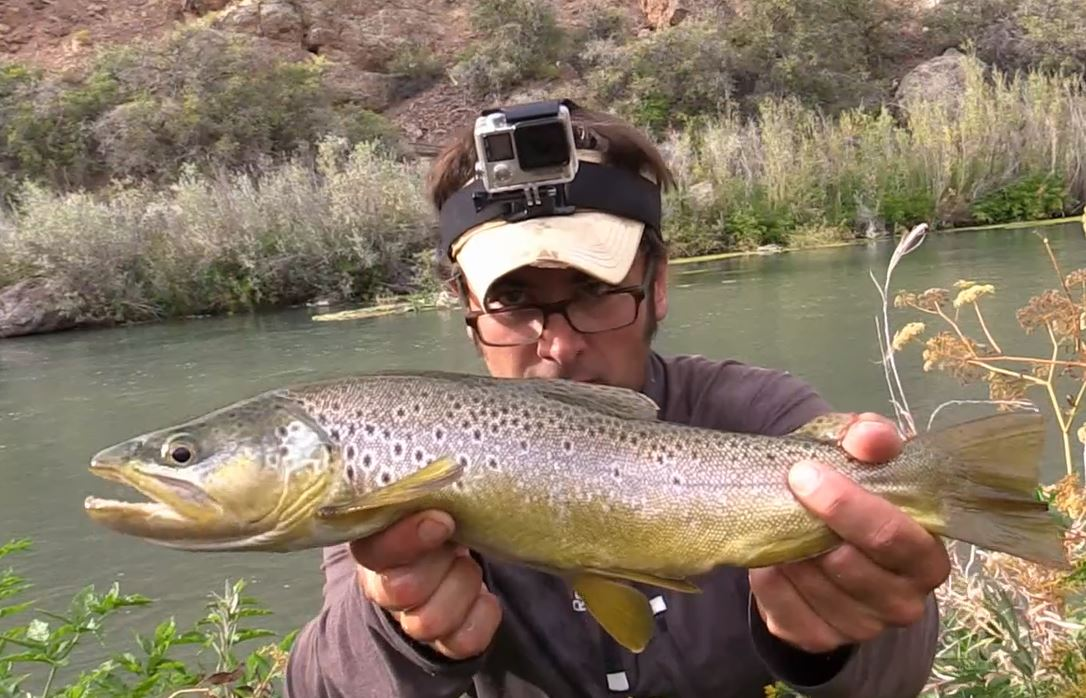 Catching big trout using a gopro