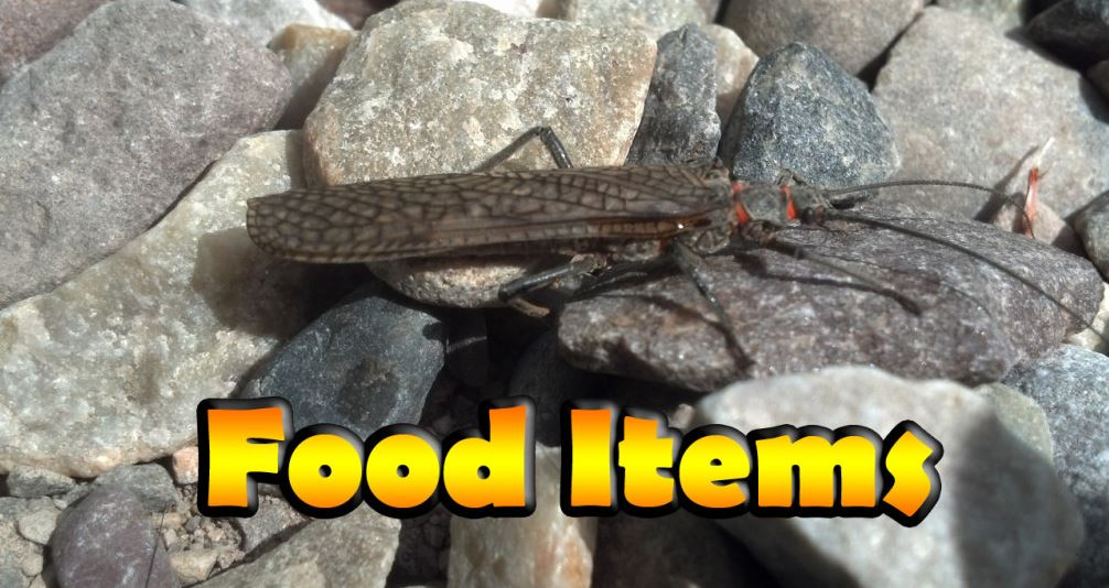 Common brook trout foods