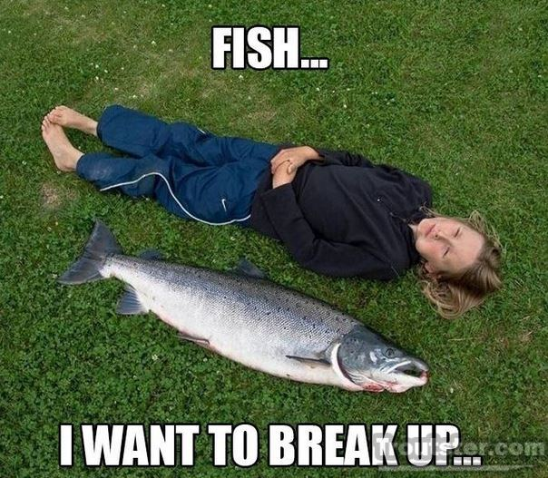Funny Fishing Pictures and Videos