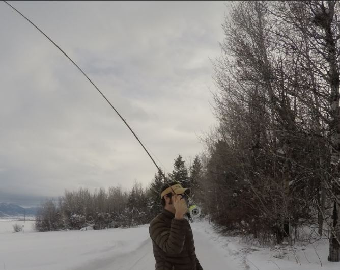 trout fly fishing, fly fishing setup for trout, how to fly fish for trout, fly fishing rigs for trout, how to fly fish for trout, fly fishing casting