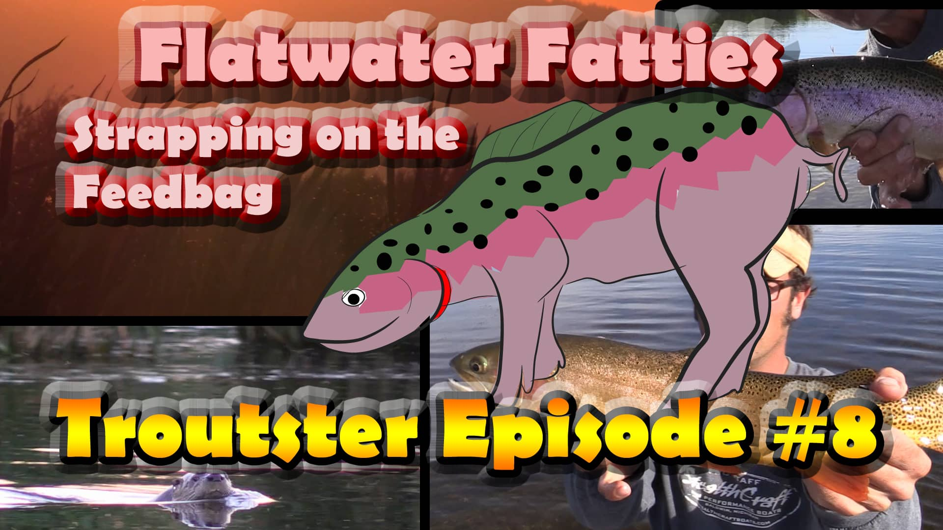 Flatwater fatties - Catching big trout on slow water with dry flies