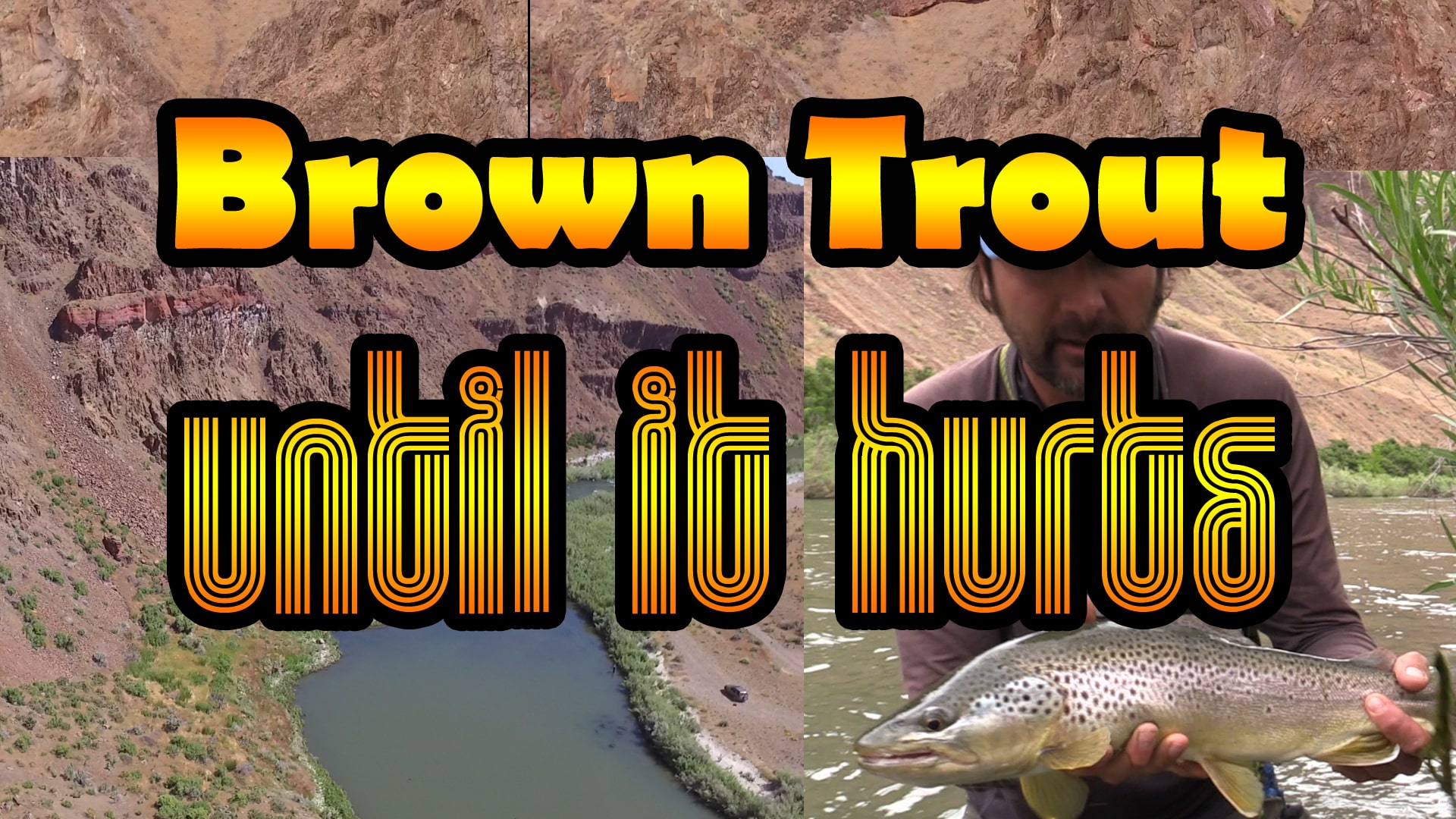 Fly fishing for brown trout in Oregon