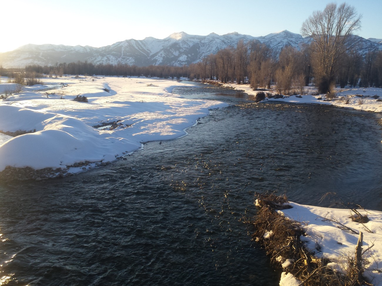 Gros ventre river in the winter 2015