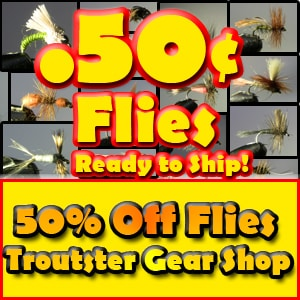 HALF OFF FLIES BANNER ch