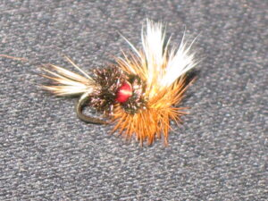 The royal Wulff Fly, inspired by the Coachman