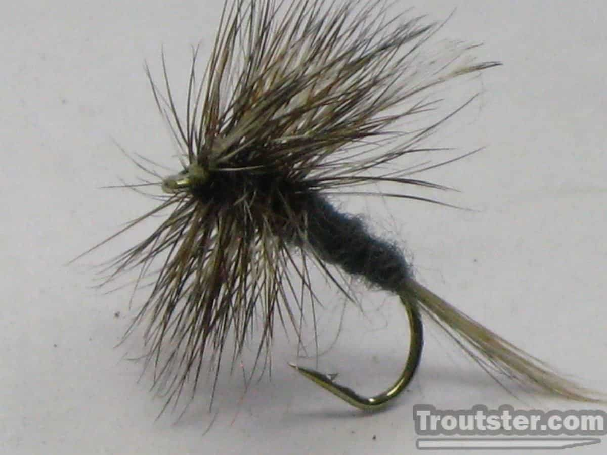 Traditional adams dry fly pattern