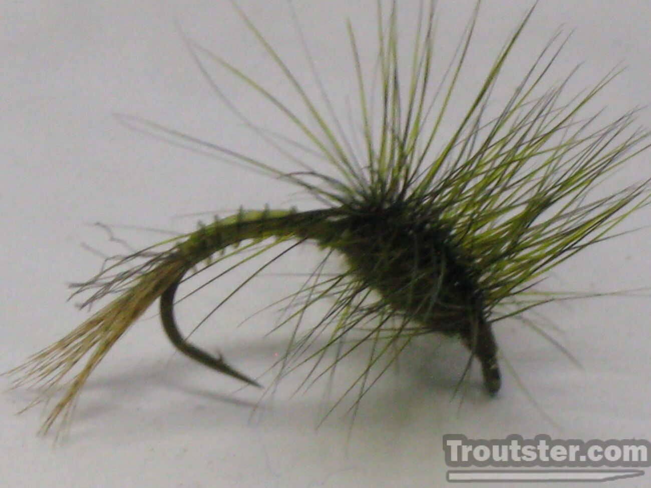 Another style of green drake emerger pattern.