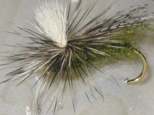 Side view of the olive easy caddis fly