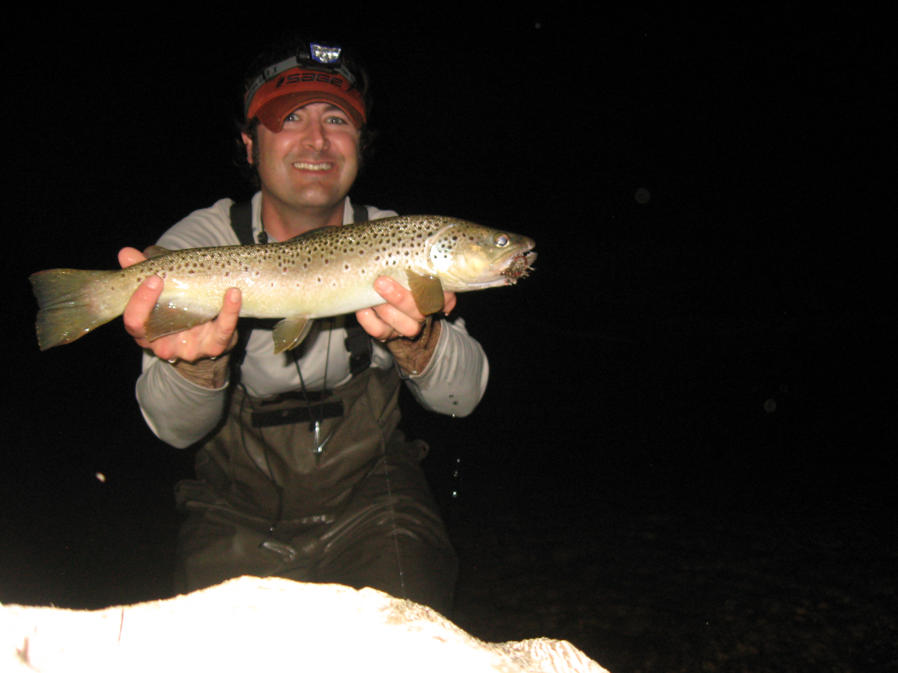 Brown trout caught on a mouse fly at night