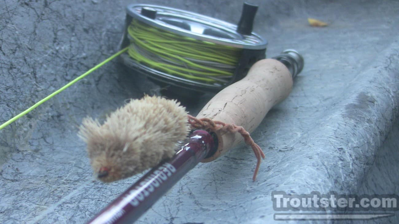 A Redington fly rod rigged with a deer hair mouse pattern